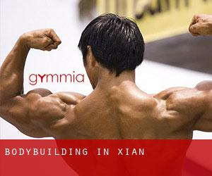 BodyBuilding in Xi'an