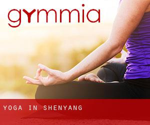 Yoga in Shenyang