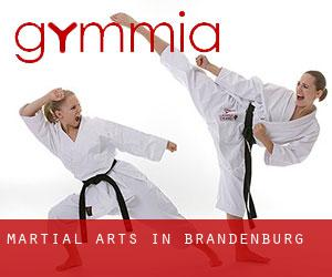 Martial Arts in Brandenburg