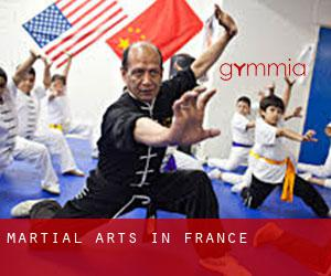 Martial Arts in France