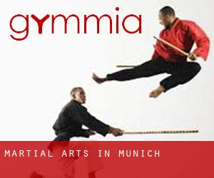 Martial Arts in Munich