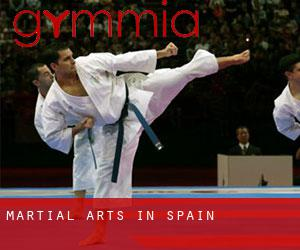 Martial Arts in Spain