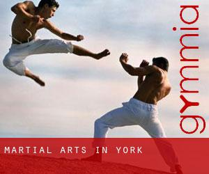 Martial Arts in York